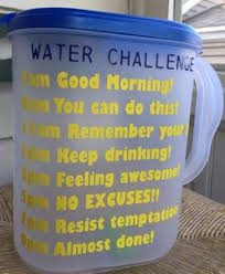 How To Do Challenge Water One Gallon Water Challenge Day 1 Gallon Water Challenge Water