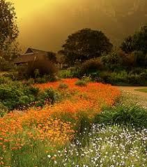 Kirstenbosch National Botanical Gardens by Kirstenbosch National Botanical Garden Wikipedia