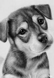best 25 pencil sketch drawing ideas on pinterest pencil