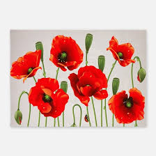 Poppy Area Rug Poppy Flower Rugs Poppy Flower Area Rugs Indoor Outdoor Rugs