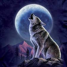 free wolf howling free clip free clip on