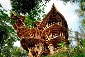 11 stunning treehouses that will make you reconsider your next