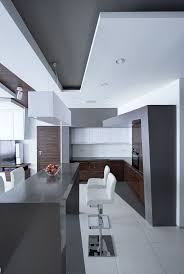 214 best kitchens images on pinterest modern kitchens kitchen