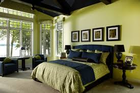 Houzz Traditional Bedrooms - blue and green bedroom houzz