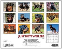 australian shepherd 2015 calendar 34 best dog gone smart dirty dog doormat images on pinterest