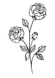 imagenes para colorear rosas dibujo para colorear rosas img 29722