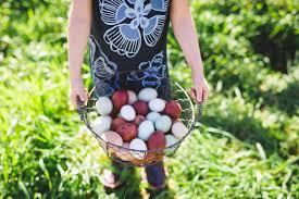 Backyard Chicken Magazine by Home Alchemist Farm U0026 Garden