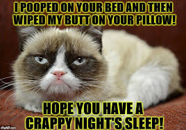 Grumpy Cat Sleep Meme - image tagged in grumpy cat imgflip