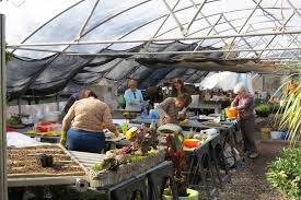classes u0026 workshops coming soon botanical garden of the ozarks