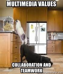 Teamwork Memes - multimedia values collaboration and teamwork dog helping cat