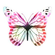 op art multi colored butterfly free stock photo public domain