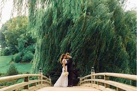 outdoor wedding venues chicago outdoor chicago wedding venues here comes the guide