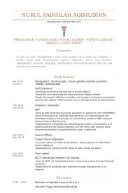 Resume Format For Aviation Ground Staff Travel Consultant Resume Samples Visualcv Resume Samples Database