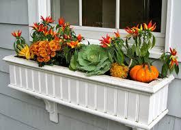 lawn u0026 garden vegetable planter box in backyard garden ideas