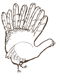turkey drawing pictures free clip free clip