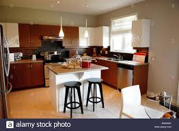 a clean new kitchen in a model house for sale in ottawa canada