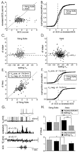 Anatomy And Physiology Songs Intrinsic And Extrinsic Contributions To Auditory Selectivity In A