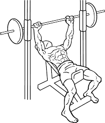 How To Do A Incline Bench Press Best Type Of Bench Press Incline Decline Or Flat Bench Press