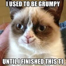 Happy Cat Meme - i used to be grumpy until i finished this t1 tard the happy cat