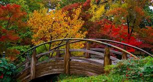 japanese garden the japanese garden fort worth botanic garden