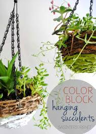 Best Plants For Hanging Baskets by Basket Green Plants Best Plants For Porch Simply Swider Choosing