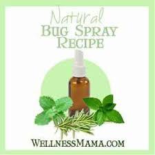 homemade bug spray recipes wellness mama