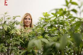 women in weed how legal marijuana could be the first billion