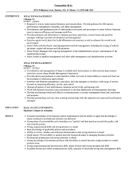 resume template for managers executives definition of terrorism wealth management resume sles velvet jobs