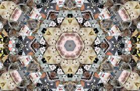 Collage Memes - cat meme kaleidoscopes cat meme art