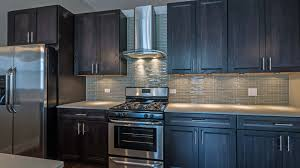 Chicago Kitchen Cabinets View Kitchen Cabinets 42 Inch Decor Color Ideas Excellent To