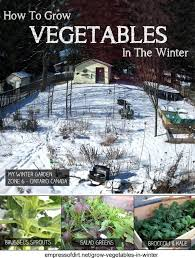 how to grow vegetables in the winter empress of dirt