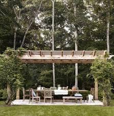 architecture leading edge for pergola home design climbing