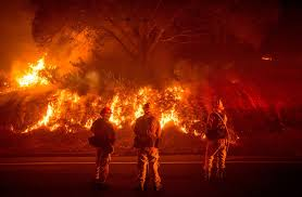Wildfire Scientific Definition by Extreme Weather Garryrogers Nature Conservation