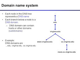 What Is Dns Domain Name by Dns Domain Name System Domain Names And Ip Addresses People