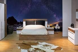 trompe l oeil chambre papier peint mural trompe l oeil fresque murale chambre