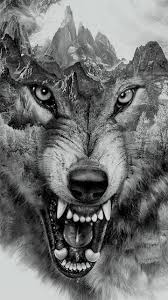 angry wolf for and