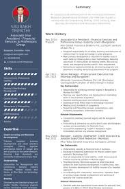 Sample Underwriter Resume by Associate Vice President Resume Samples Visualcv Resume Samples