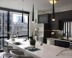 apartment luxury apartment chicago beautiful home design fancy