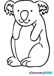 koala bear coloring discovery kids
