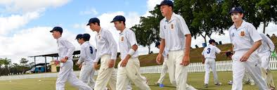 The ficial home of Australia s favourite sport