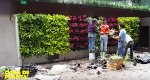 Green Design Ideas by Vertical Gardening Inhabitat Green Design Innovation