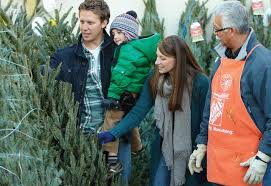 christmas tree buying guide how to select u0026 care for your live