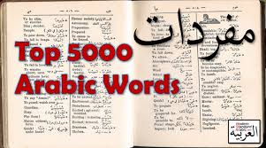 msa siege social top 5000 words modern standard