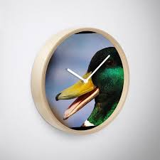 Mallard Duck Home Decor Laughing Mallard Duck