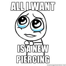 Piercing Meme - all i want is a new piercing piercings and tattoos meme flickr
