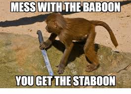 Baboon Meme - mess with the baboon you get the staboon baboon meme on me me