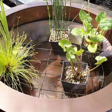 best 25 patio pond ideas on pinterest fish ponds diy pond and