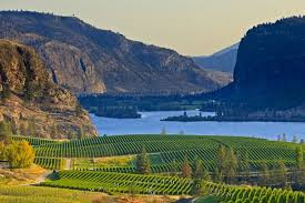 Rugged Landscape Scenic Vineyard Lake Picture Photo Information