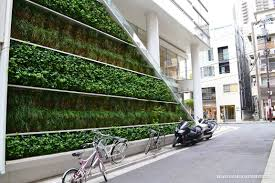 living walls and vertical gardens living art