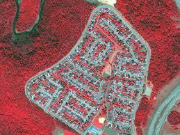 Alberta Wildfire Job Application by What Satellite Images Are Teaching Us About Life On Earth Diane Rehm
